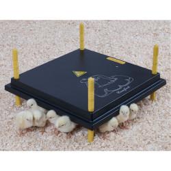Umělá kvočna - výhřevná deska 40x40 cm, 45 W.