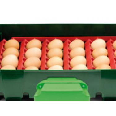Sada držáků vajec pro líhně Covina/ET49, Real 49